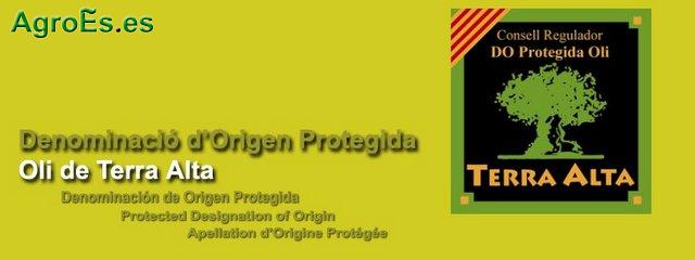 Aceites de Oli de Terra Alta con Denominación de Origen