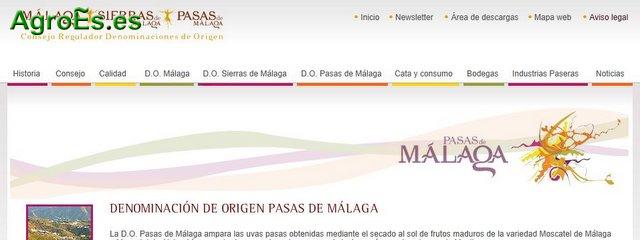 Pasas de Málaga con Denominación de Origen