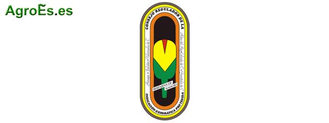 Berenjena de Almagro con IGP de Denominación de Origen