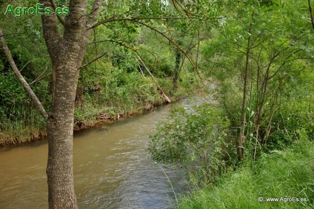 agua suelo planta
