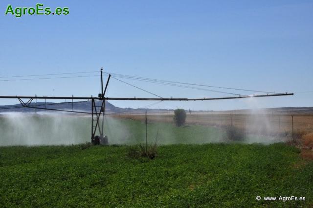 El Fósforo y Potasio en fertilización de los cultivos forrajeros y recomendaciones de abonado con fósforo y potasa