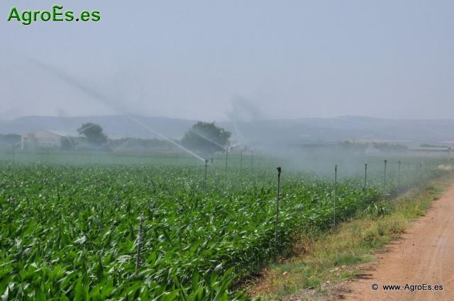 Riego por aspersión en Agricultura - Regadíos con aspersores