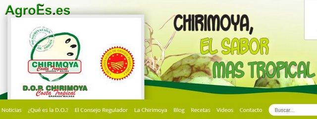Chirimoya Costa Tropical Granada Málaga con Denominación de Origen