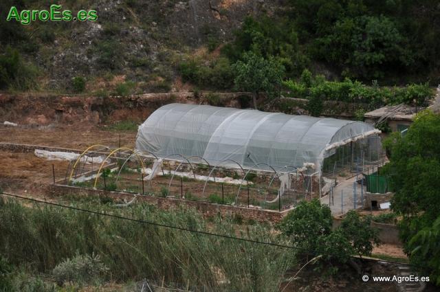 Abonado en cultivos hortícolas y Cálculo de la dosis - Recomendaciones de fertilización