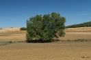 Sierra de Almansa