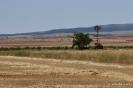 Paisajes de campos