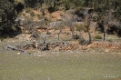 Tramo de Río Madera hasta la Fuente
