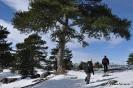Senderismo con nieve_10