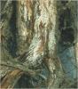 Podredumbres blancas de la raíz