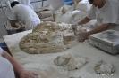 Panadería Rincón del Segura_41