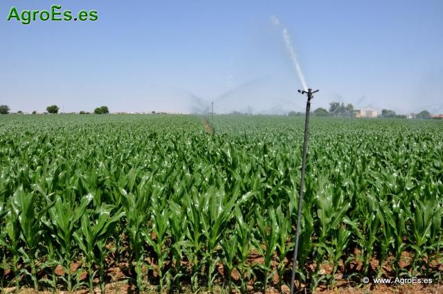 Agua riegos y regad os para agriocultura for Proyecto de riego por aspersion